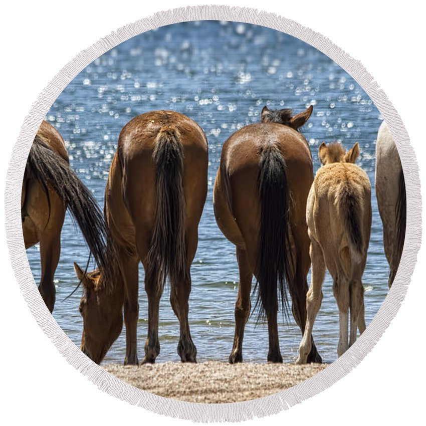 Wild Horses Round Beach Towel featuring the photograph Behind The Scenes by Saija Lehtonen