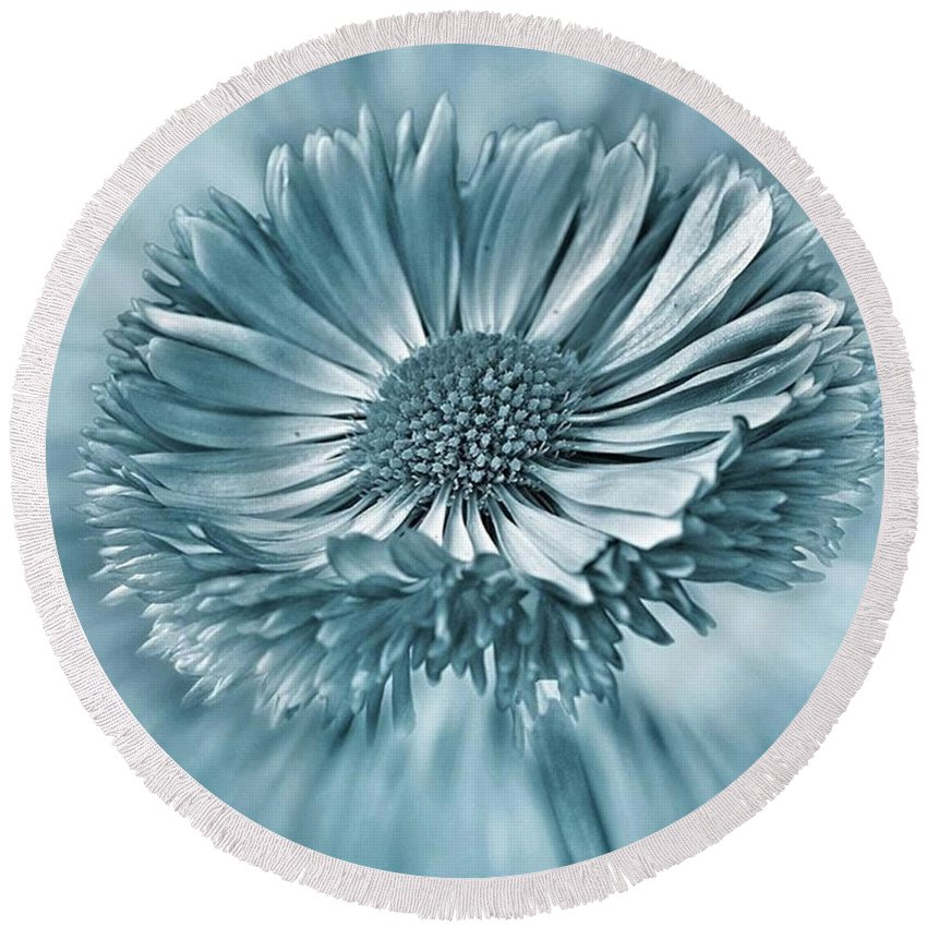 Beautiful Round Beach Towel featuring the photograph Bellis In Cyan  #flower #flowers by John Edwards