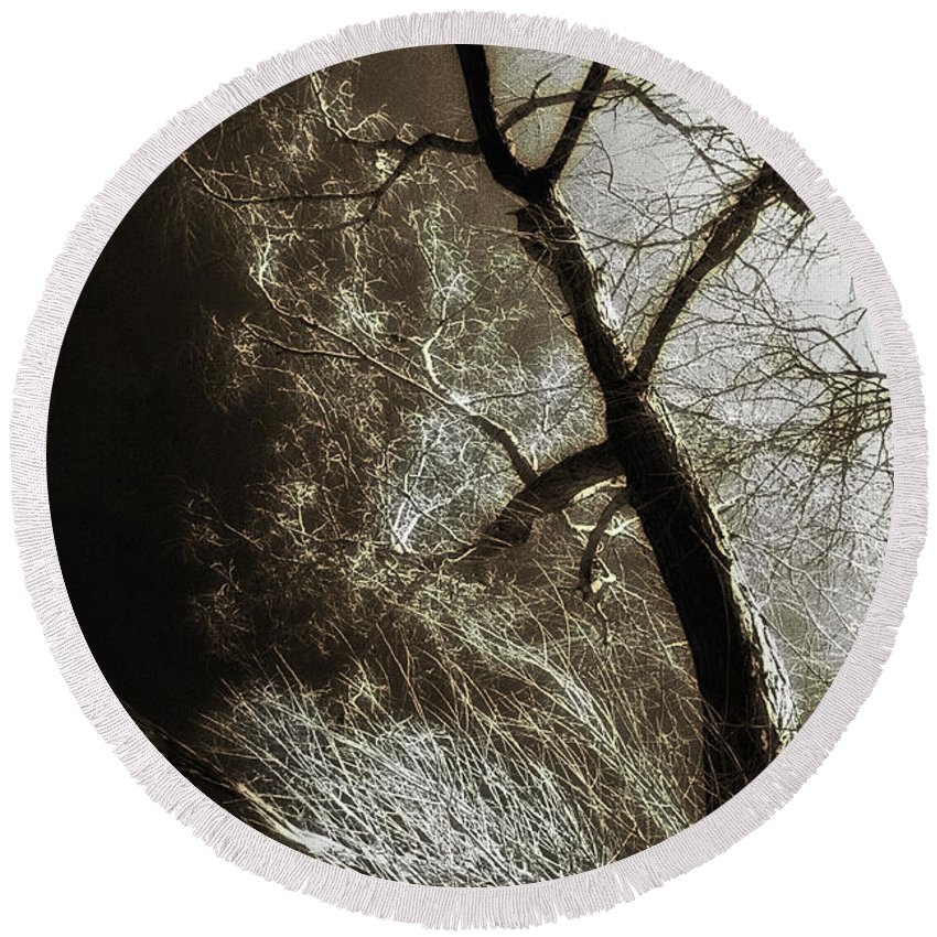 Tree Round Beach Towel featuring the photograph Beyond The Eyes by Jon Delorme