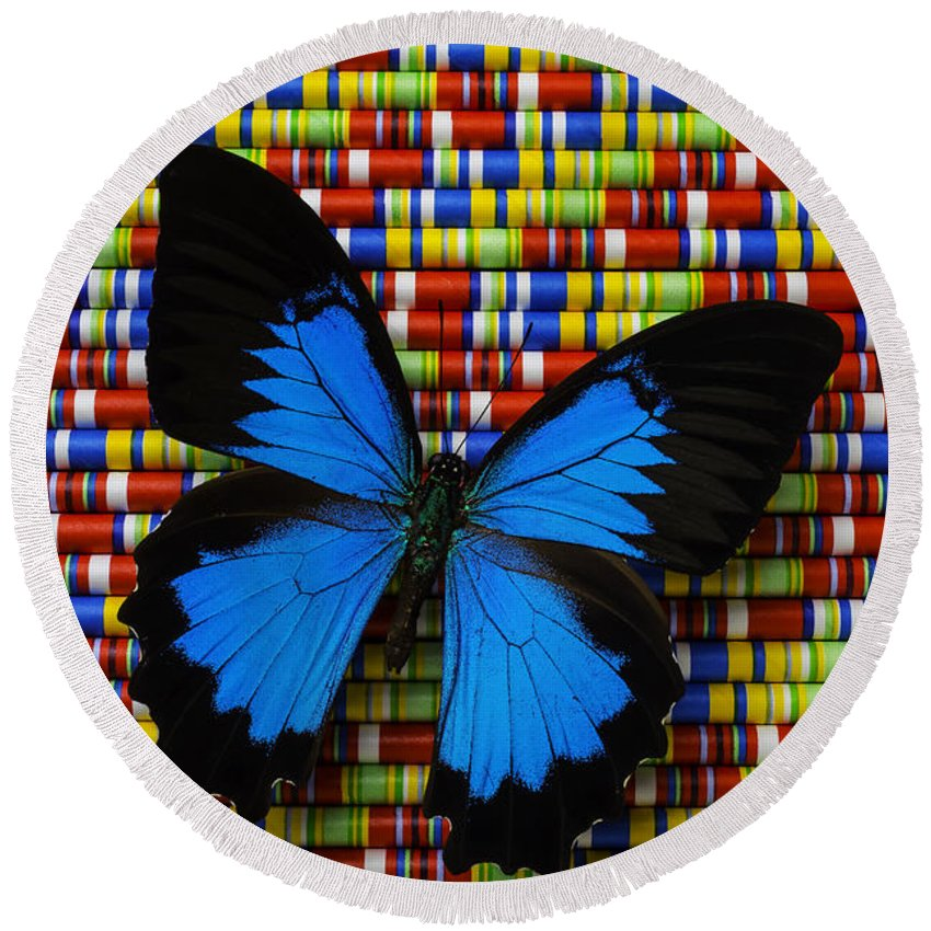 Single Round Beach Towel featuring the photograph Big Blue Butterfly by Garry Gay