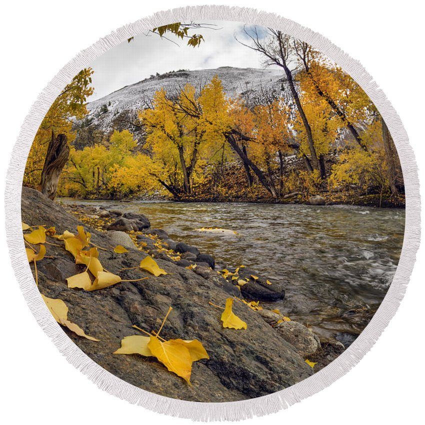 Autumn Round Beach Towel featuring the photograph Big Lost Autumn Color by Leland D Howard