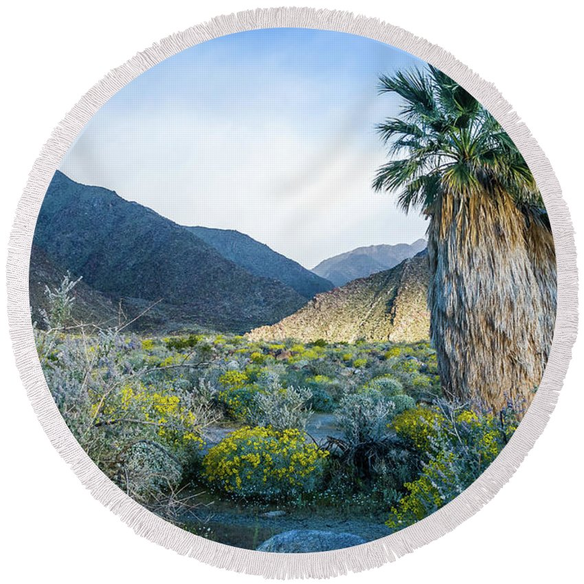 Wildflowers Round Beach Towel featuring the photograph Big Palm by Jerry Sellers
