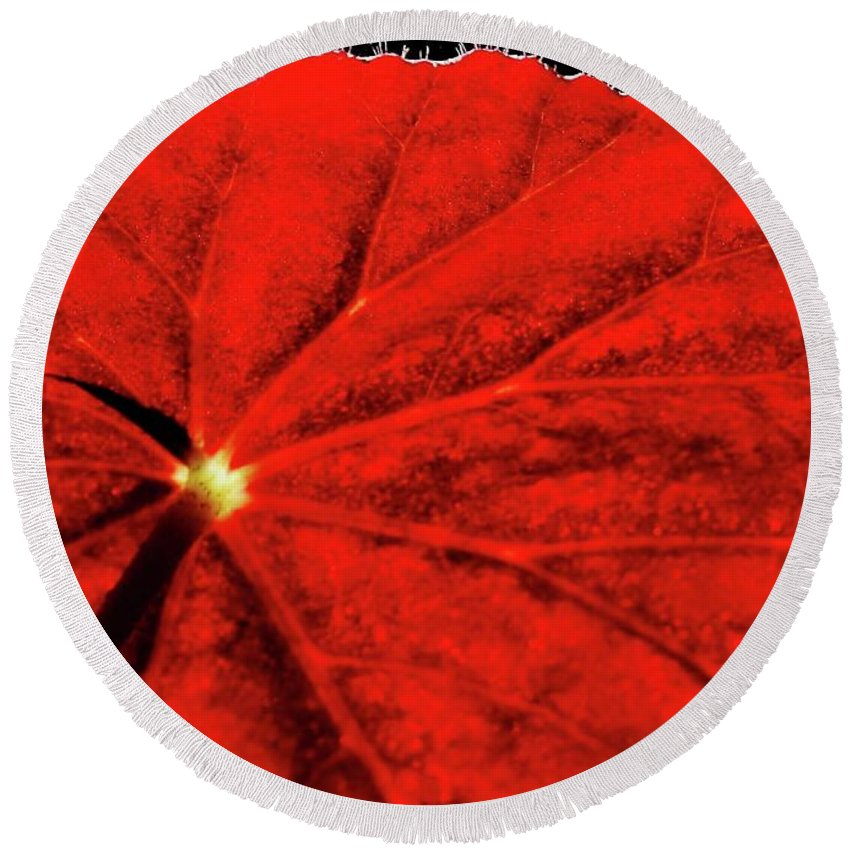 Red Round Beach Towel featuring the photograph Big Red by Sabrina L Ryan