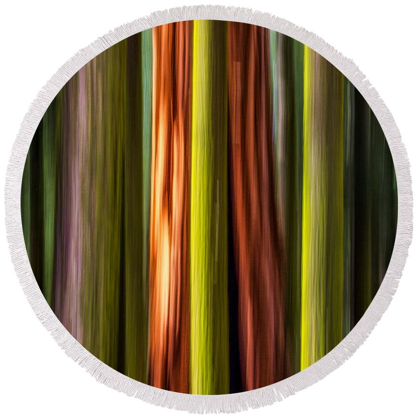 Plants Round Beach Towel featuring the photograph Big Trees Abstract by Rikk Flohr