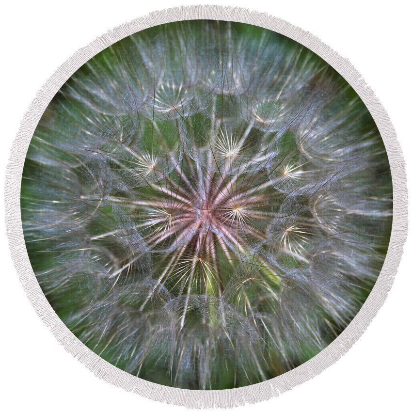 Dandelion Round Beach Towel featuring the photograph Big Wish by Linda Sannuti