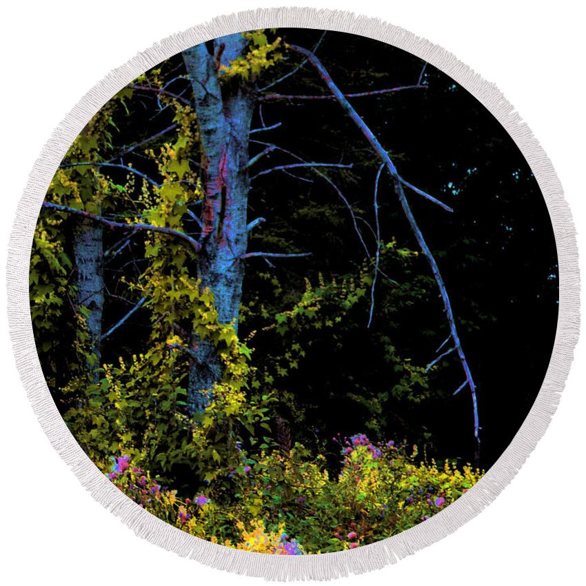 Birch Trees In Summer Round Beach Towel featuring the photograph Birch And Vines by Joanne Smoley