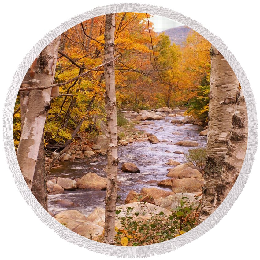 Landscape Round Beach Towel featuring the photograph Birches On The Kancamagus Highway by Nancy Griswold