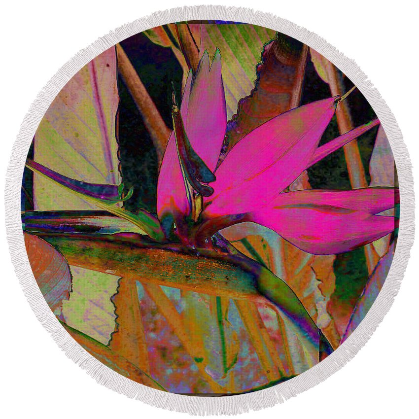 Flower Round Beach Towel featuring the digital art Bird Of Paradise by Barbara Berney