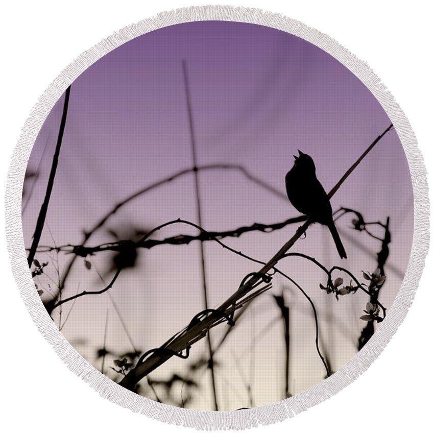 Silhouette Round Beach Towel featuring the photograph Bird Sings by Angie Tirado