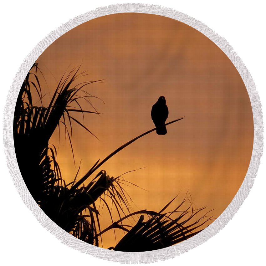 California Round Beach Towel featuring the photograph Birds Eye View Photograph by Kimberly Walker