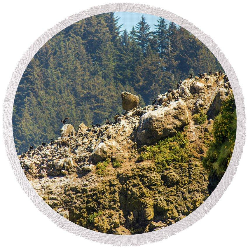 Oregon Round Beach Towel featuring the photograph Birds On The Rocks by Jonny D