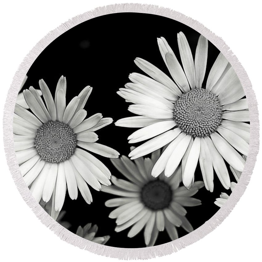 Flower Round Beach Towel featuring the photograph Black And White Daisy 2 by Alisha Jurgens
