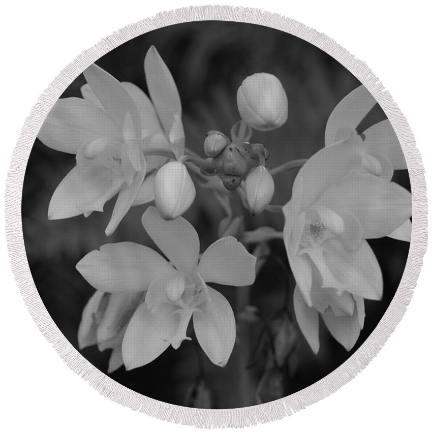 Macro Round Beach Towel featuring the photograph Black And White Flower by Rob Hans