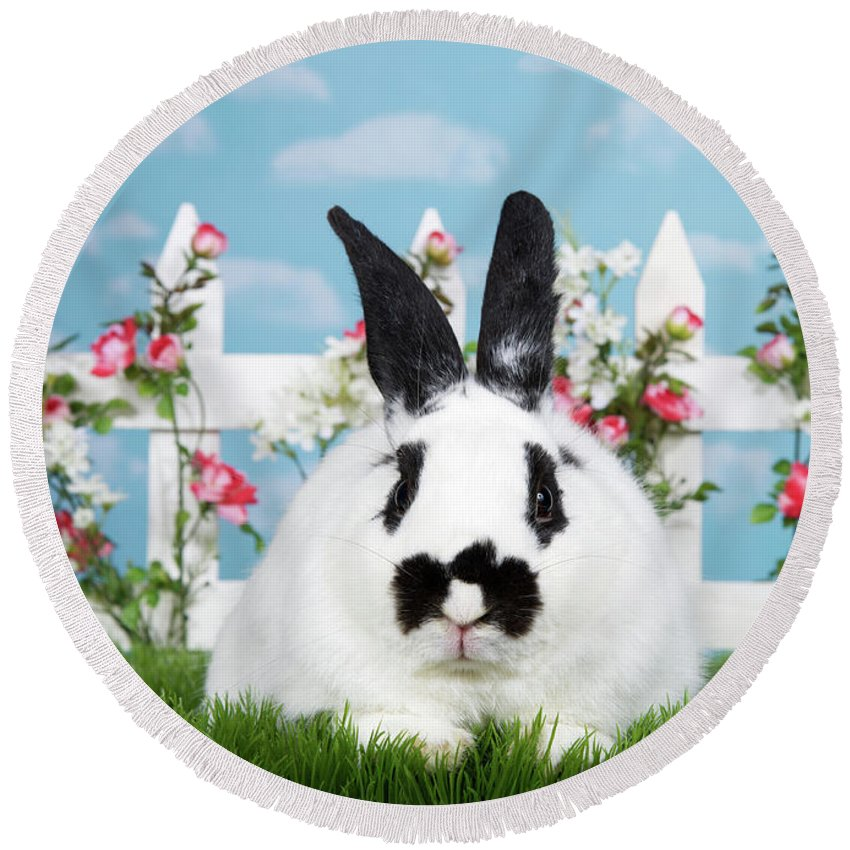 Easter Round Beach Towel featuring the photograph Black And White Spring Bunny by Sheila Fitzgerald