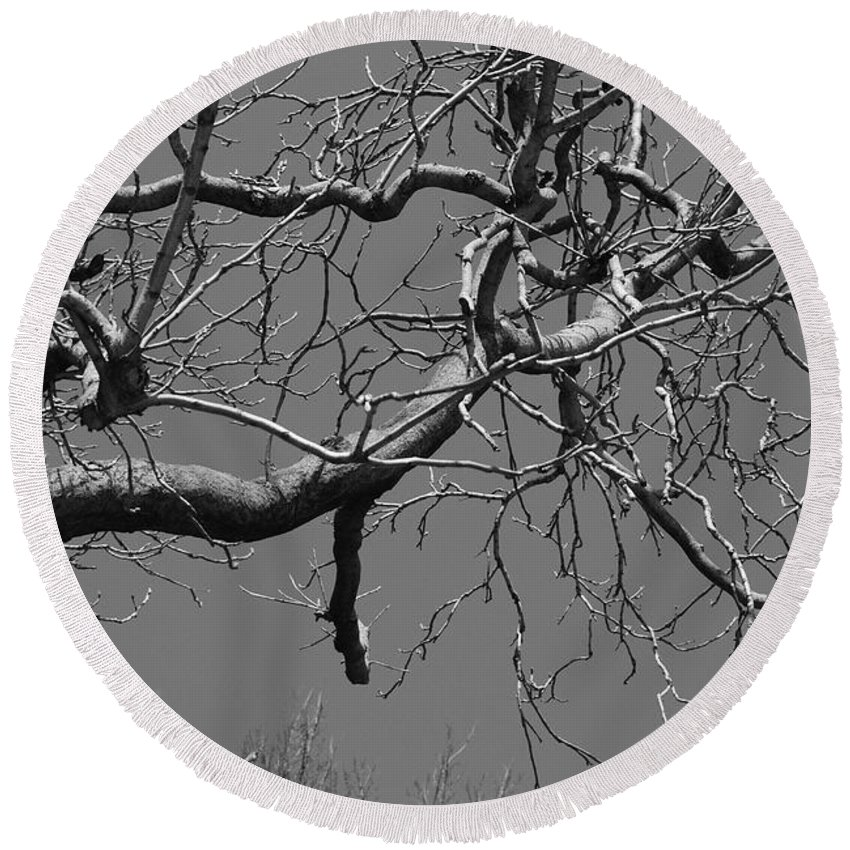 Sky Round Beach Towel featuring the photograph Black And White Tree Branch by Rob Hans