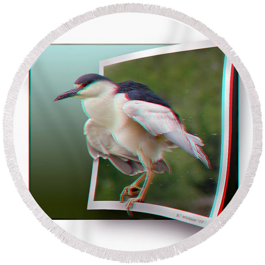 3d Round Beach Towel featuring the photograph Black Crowned Night Heron - Use Red-cyan 3d Glasses by Brian Wallace