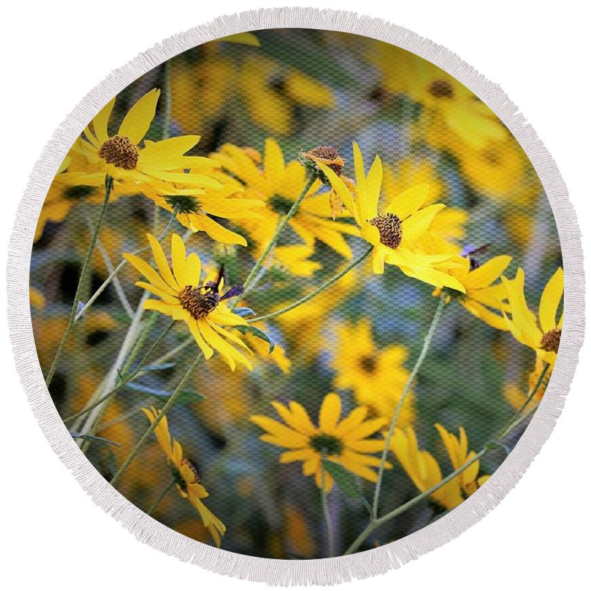 Blackeyed_susan Round Beach Towel featuring the photograph Black-eyed Susan Texturized by Diann Fisher