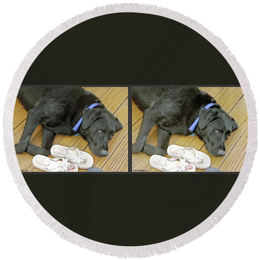 3d Round Beach Towel featuring the photograph Black Lab - Gently Cross Your Eyes And Focus On The Middle Image by Brian Wallace