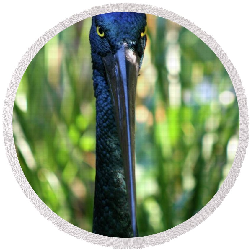 Black Necked Stork Round Beach Towel featuring the photograph Black Necked Stork by Gregory E Dean