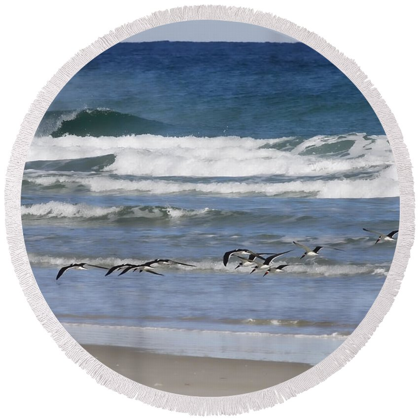Black Round Beach Towel featuring the photograph Black Skimmers In Ponce by Deborah Benoit