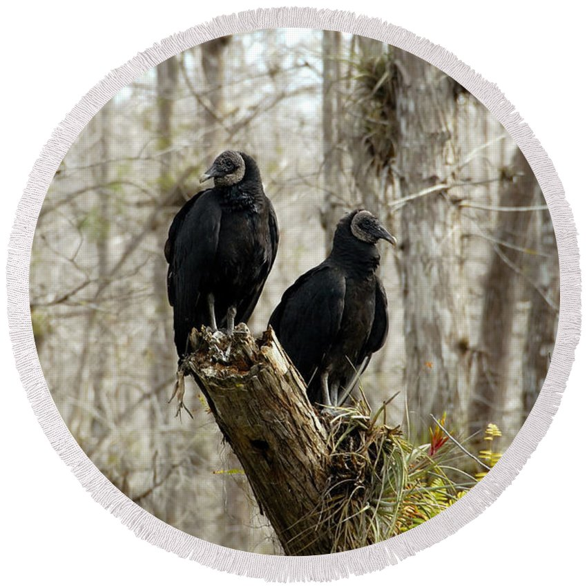 Black Vultures Round Beach Towel featuring the photograph Black vultures by David Lee Thompson