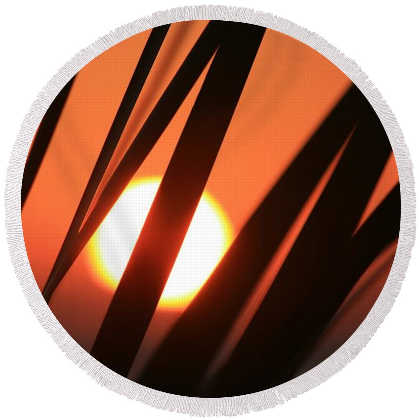 Sun Round Beach Towel featuring the photograph Blazing Sunset And Grasses by Nadine Rippelmeyer
