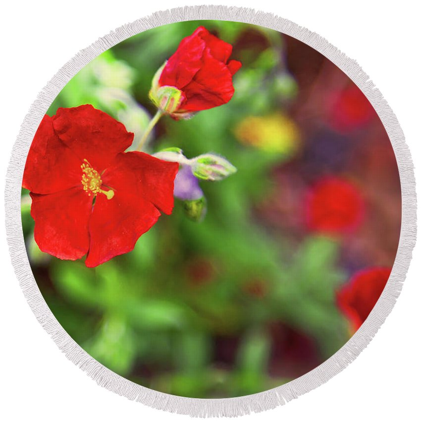 Red Flowers Round Beach Towel featuring the photograph Bleeding Spring 3 by Alex Art and Photo
