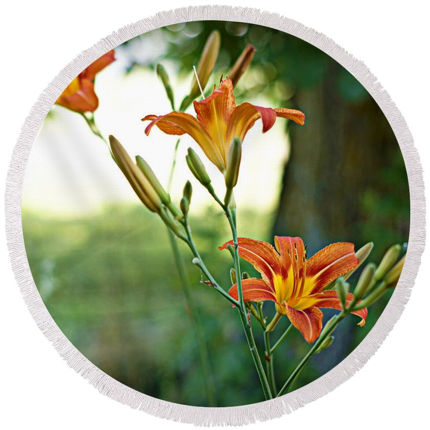 Flowers Round Beach Towel featuring the photograph Bloom Where You're Planted by Cricket Hackmann