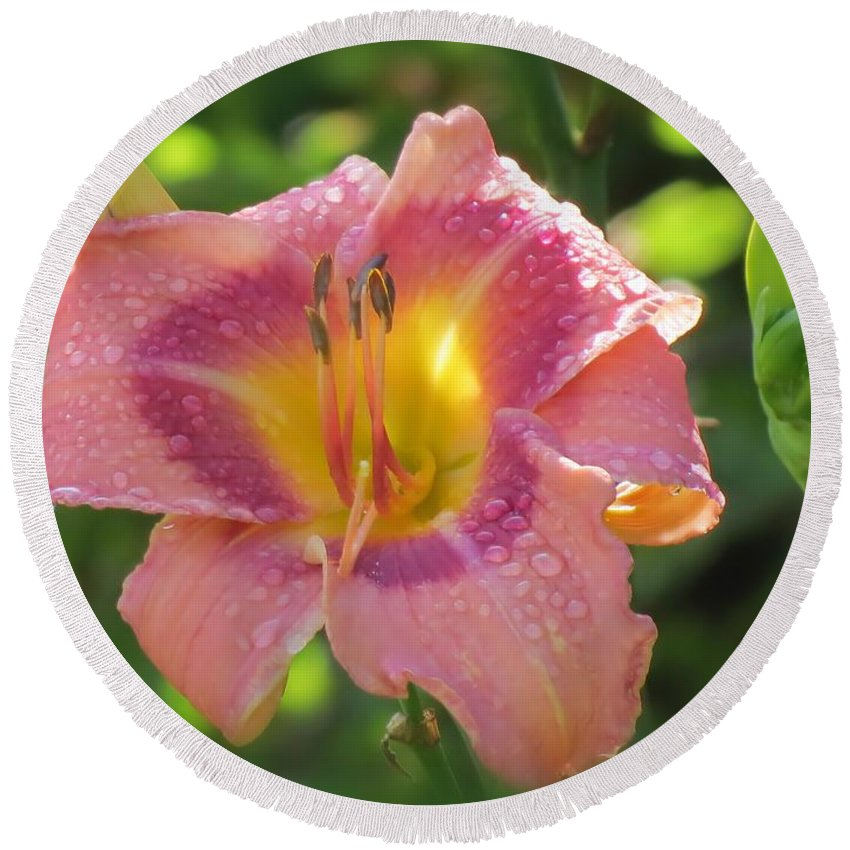 Daylily Round Beach Towel featuring the photograph Blooming In Pink by MTBobbins Photography