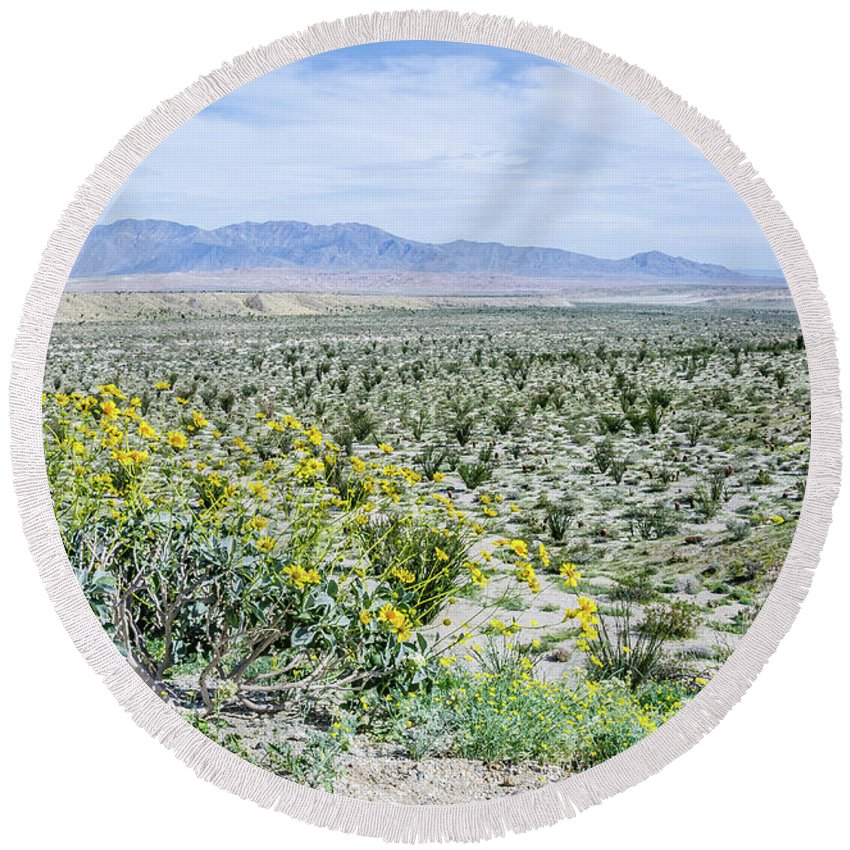 Wildflowers Round Beach Towel featuring the photograph Blossom Time by Jerry Sellers