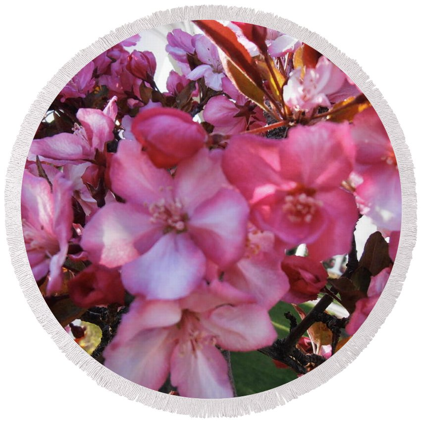 Blossoms Round Beach Towel featuring the photograph Blossoming by Summer Ballantyne
