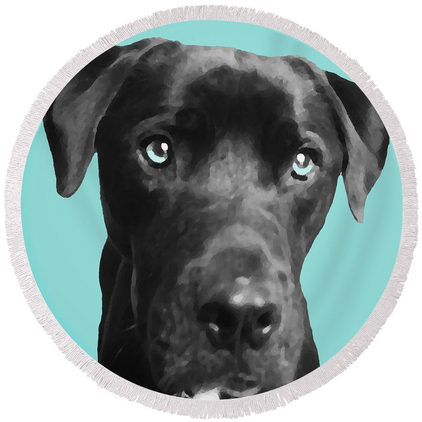 dog Art Round Beach Towel featuring the photograph Blue by Amanda Barcon