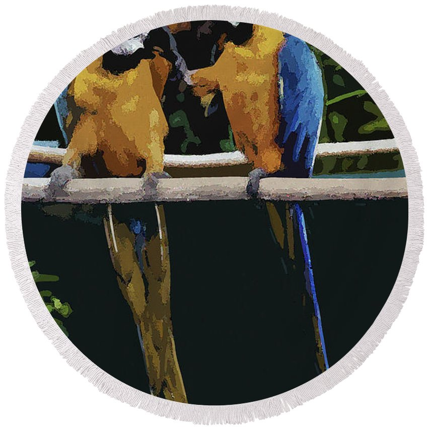 Parrots Round Beach Towel featuring the photograph Blue And Gold Macaw 1 by Mark Fuge