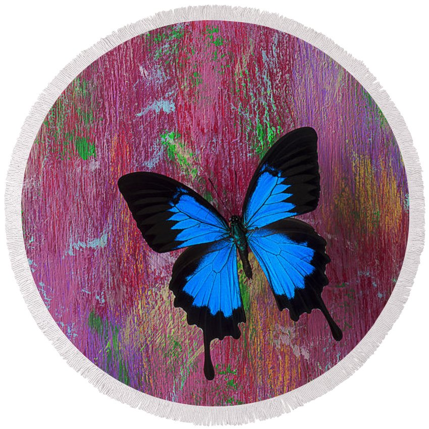 Blue Butterfly Round Beach Towel featuring the photograph Blue Butterfly On Colorful Wooden Wall by Garry Gay