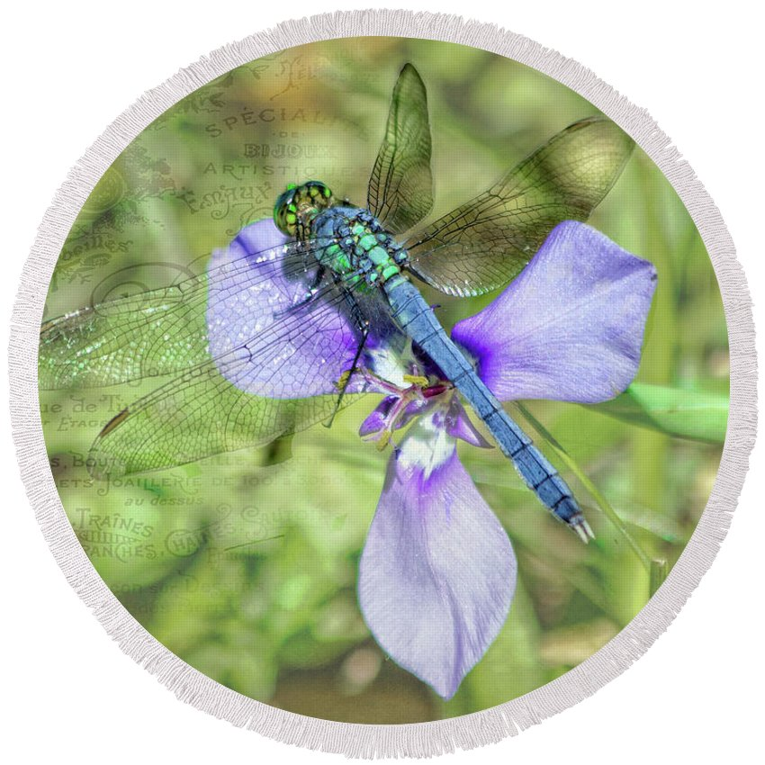 Dragonfly Round Beach Towel featuring the photograph Blue Dasher Dragonfly 2 by TN Fairey