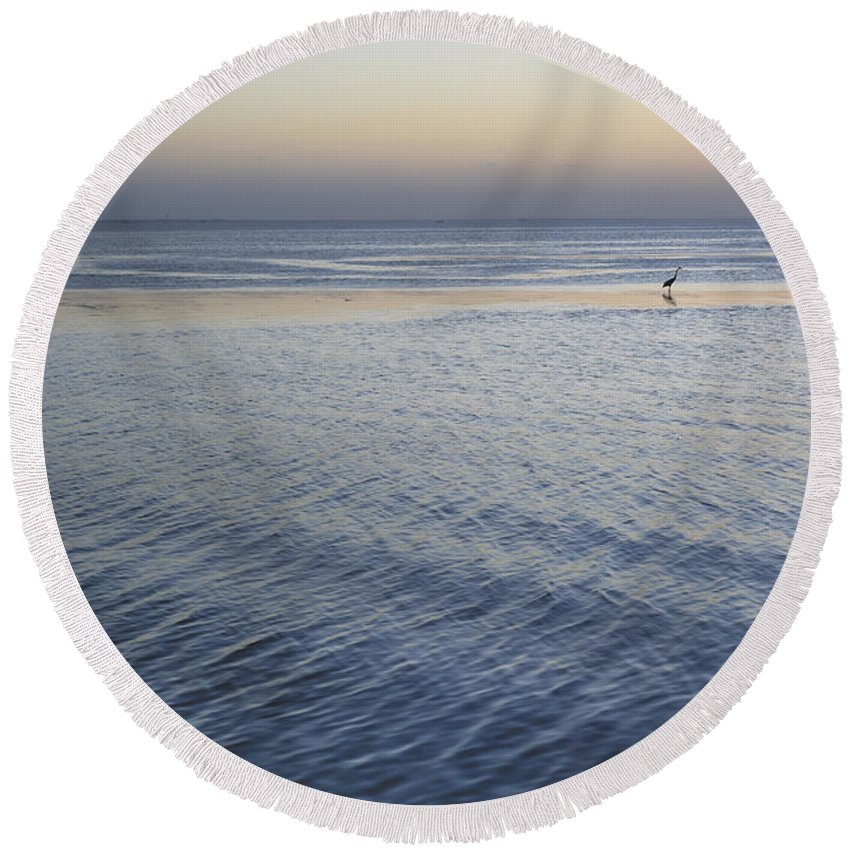 Great Blue Heron Round Beach Towel featuring the photograph Evening Blue by Gabriel G Medina