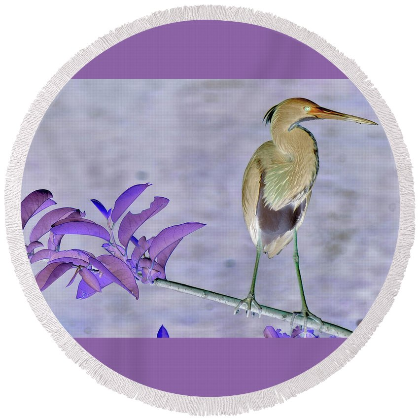 Landscape Round Beach Towel featuring the photograph Blue Heron Colorized by Stan Roban