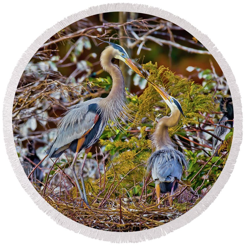 Blue Herons Round Beach Towel featuring the photograph Blue Herons by Dennis Goodman