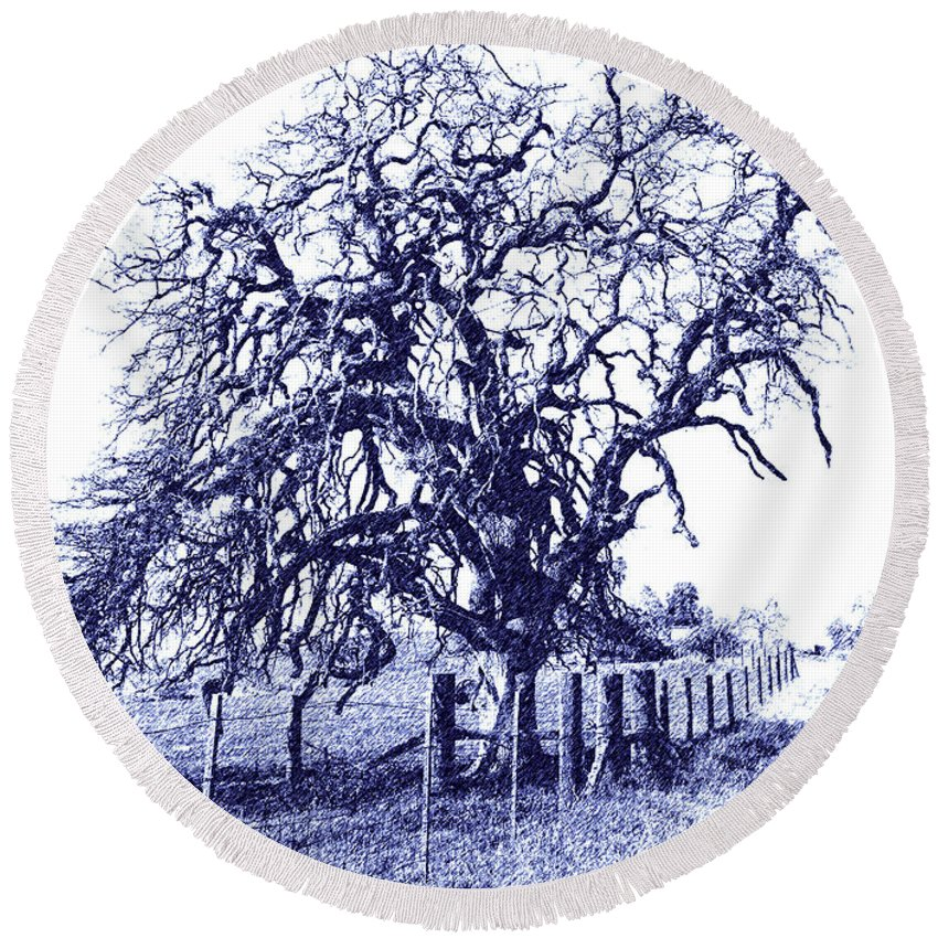 Original Round Beach Towel featuring the photograph Blue Oak by Pamela Matthews