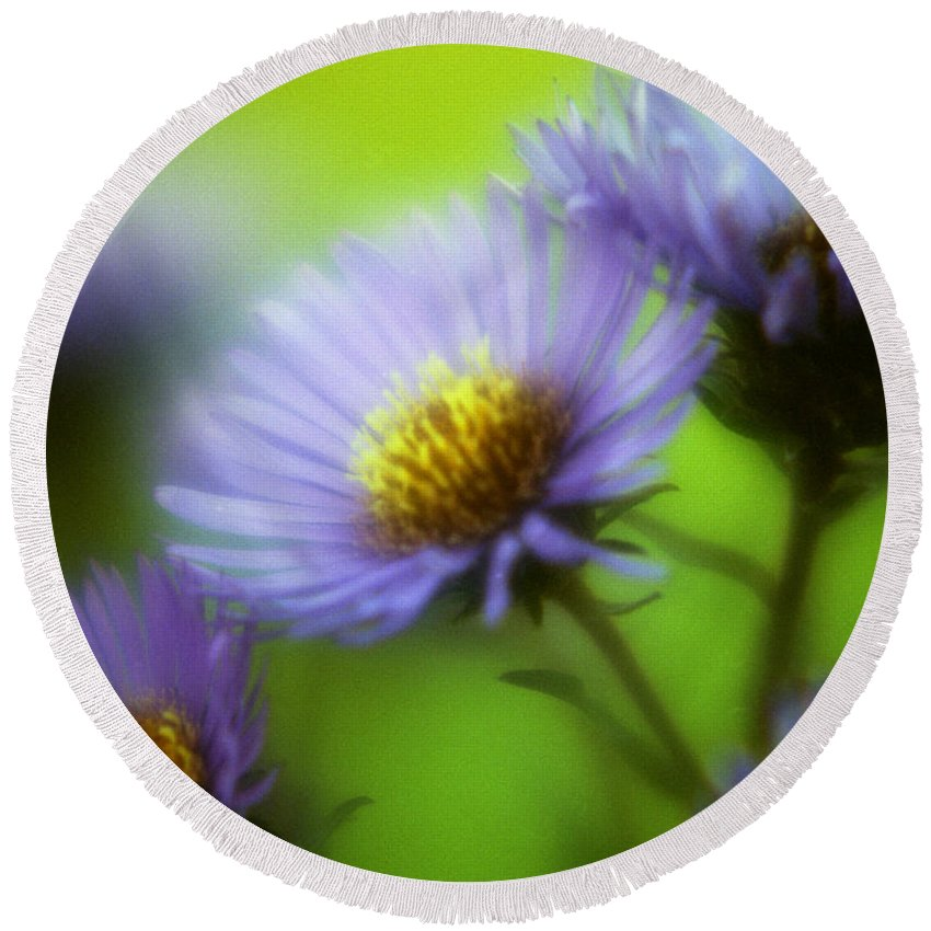 Flowers. Macrophotography Round Beach Towel featuring the photograph Blue On Green by Lee Santa