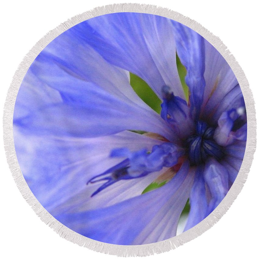 Flower Round Beach Towel featuring the photograph Blue Princess by Rhonda Barrett