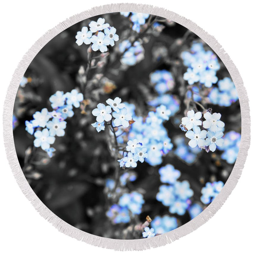 Blue Wildflowers Round Beach Towel featuring the photograph Blue Spring V2 by Alex Art and Photo
