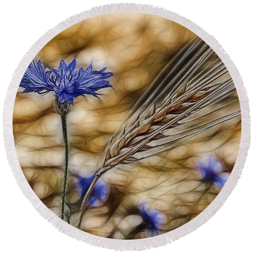 Cornfield Round Beach Towel featuring the photograph Blue Stars by Joachim G Pinkawa