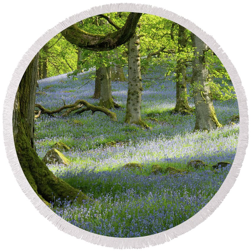 Bluebell Round Beach Towel featuring the photograph Bluebell Wood by Tom Broadhurst
