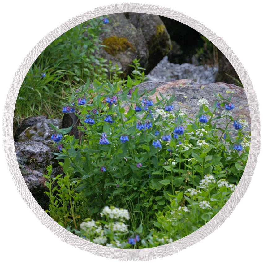 Wildflowers Round Beach Towel featuring the photograph Bluebells by Heather Coen