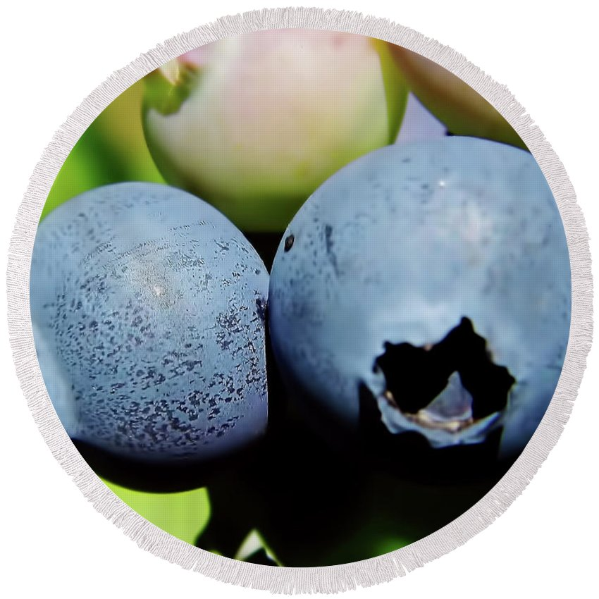 Blue Berries Round Beach Towel featuring the photograph Blueberries by D Hackett