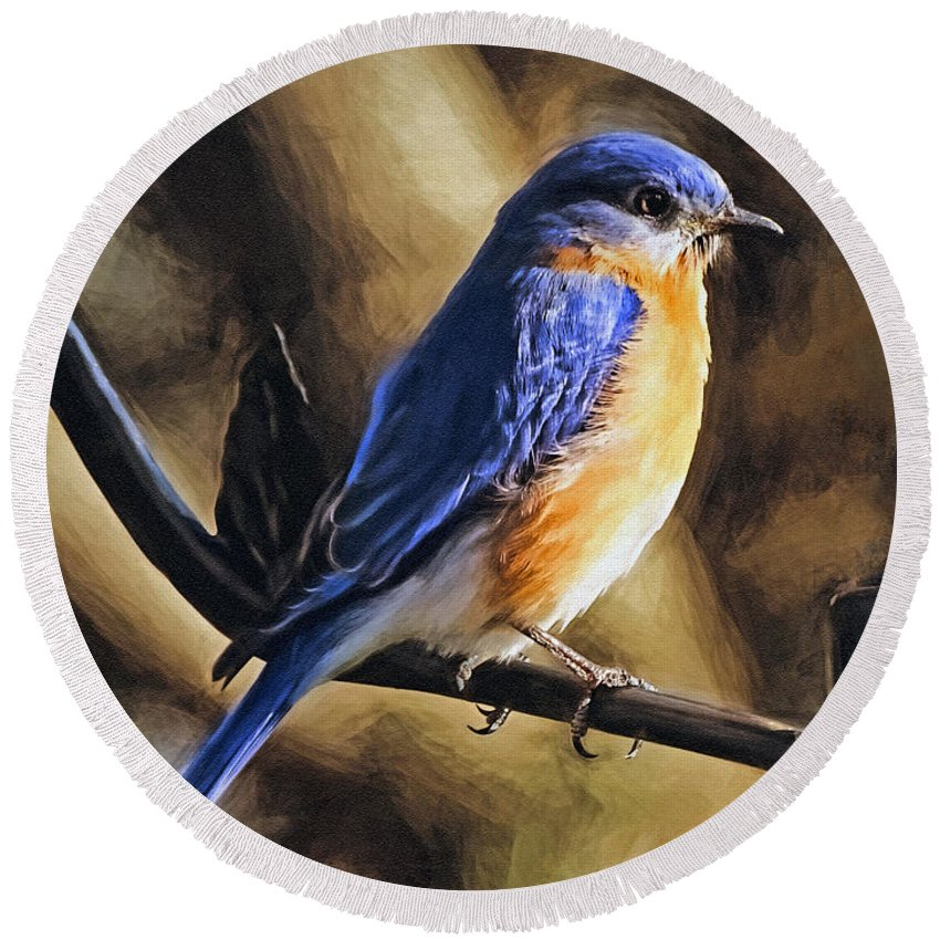 Bluebird Round Beach Towel featuring the photograph Bluebird Portrait by Sue Melvin