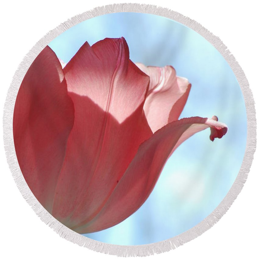 Tulip Round Beach Towel featuring the photograph Blush by Michelle Hastings
