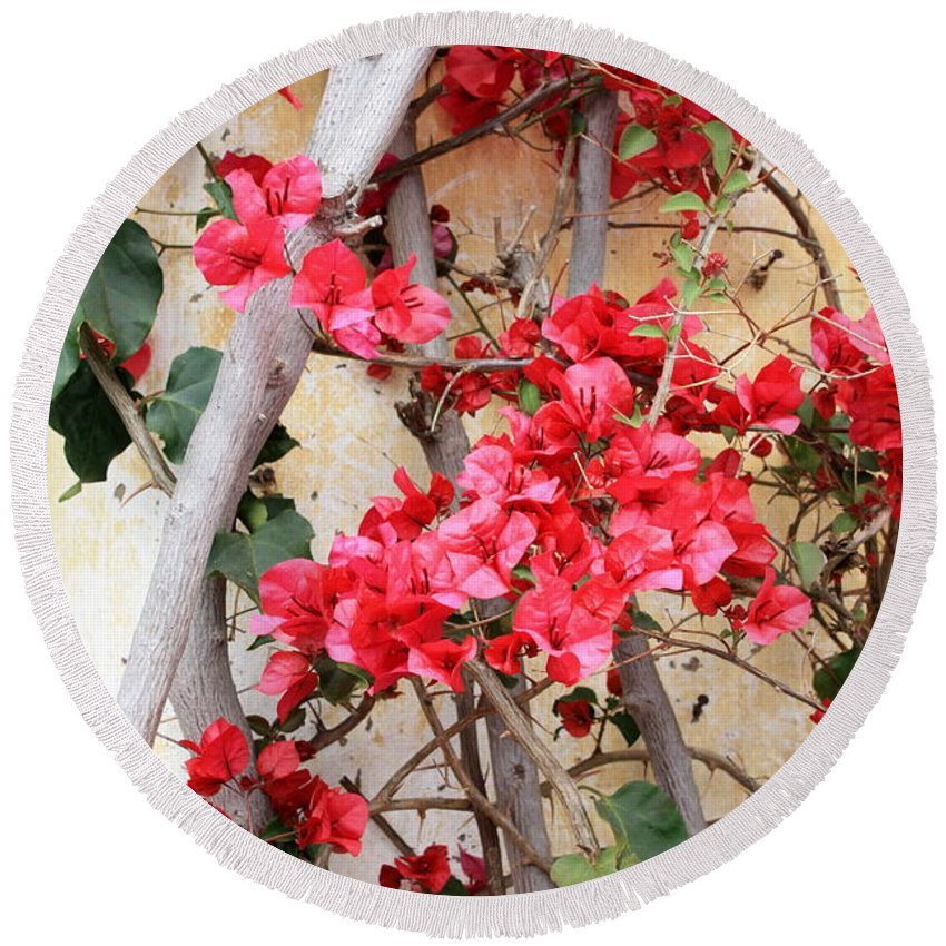 Bougainvilla Round Beach Towel featuring the photograph Bougainvillea by Carol Groenen