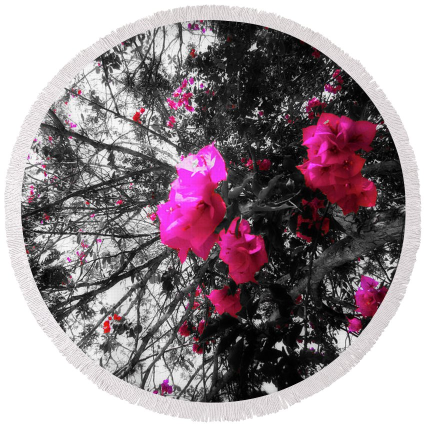 Bougainvillea Round Beach Towel featuring the photograph Bougainvillea Invasion by Douglas Barnard